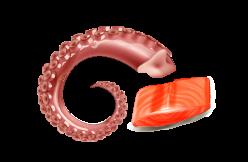 mollusques et crustacés crus