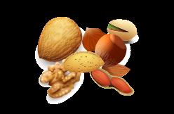 fruits à coque et graines oléagineuses